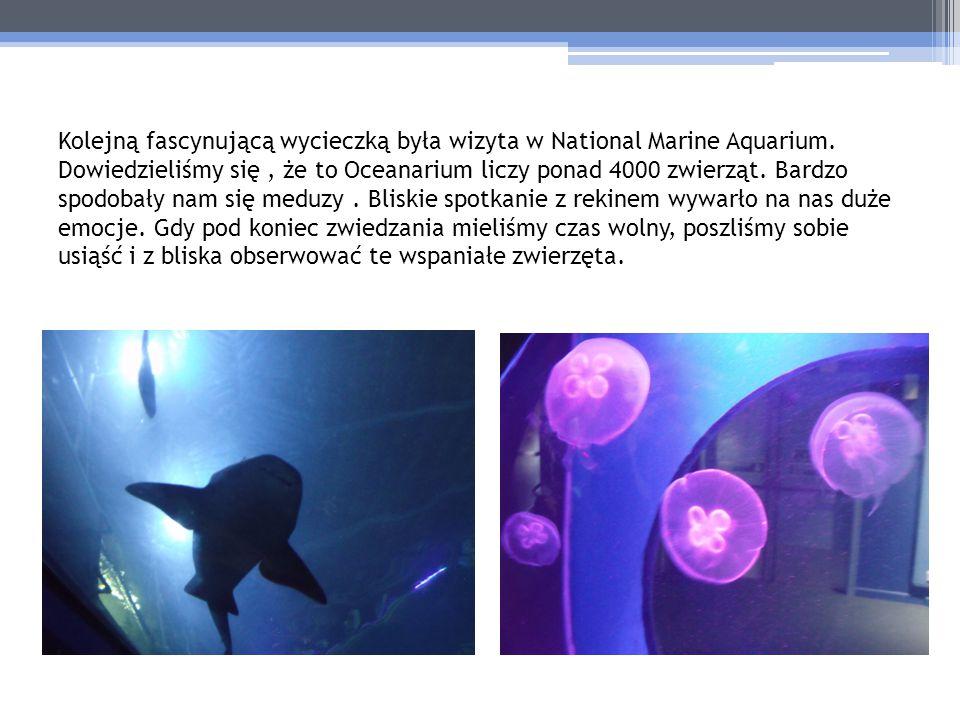 Kolejną fascynującą wycieczką była wizyta w National Marine Aquarium
