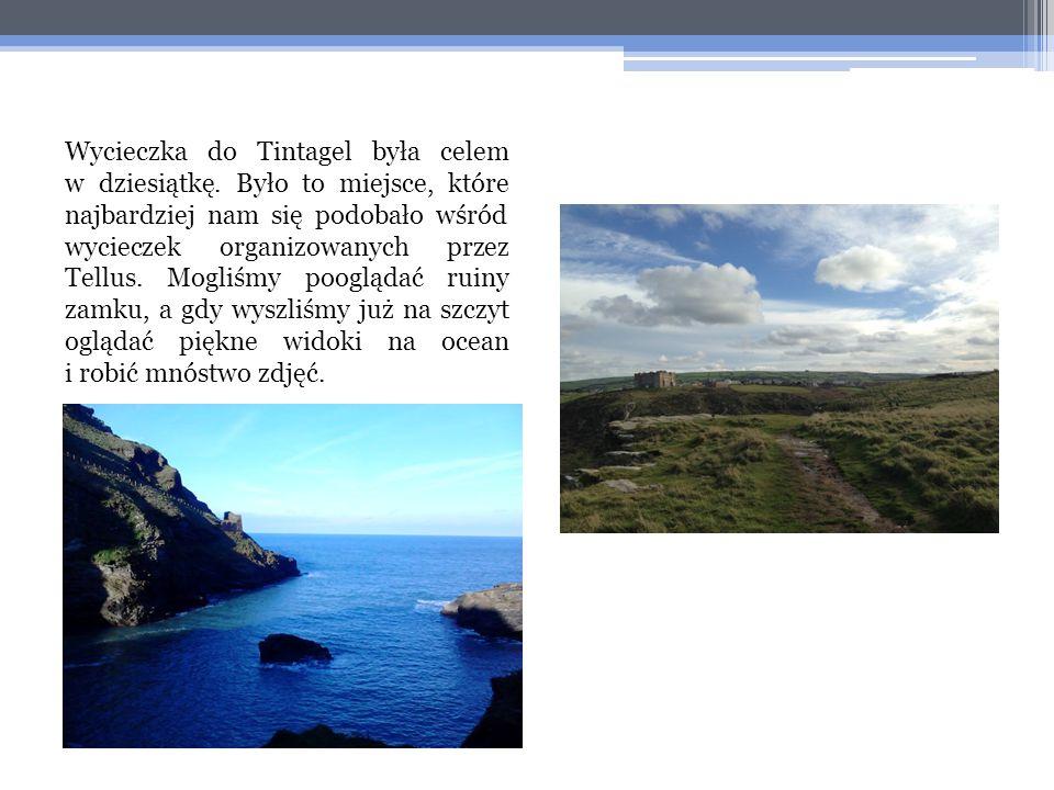 Wycieczka do Tintagel była celem w dziesiątkę