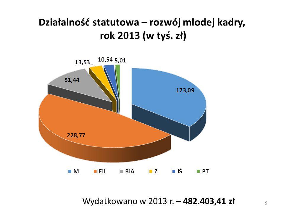 Działalność statutowa – rozwój młodej kadry, rok 2013 (w tyś. zł)