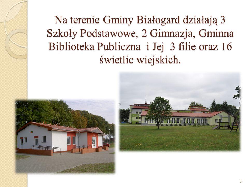 Na terenie Gminy Białogard działają 3 Szkoły Podstawowe, 2 Gimnazja, Gminna Biblioteka Publiczna i Jej 3 filie oraz 16 świetlic wiejskich.