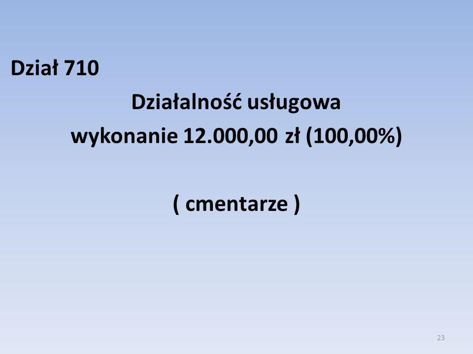 Dział 710 Działalność usługowa wykonanie 12