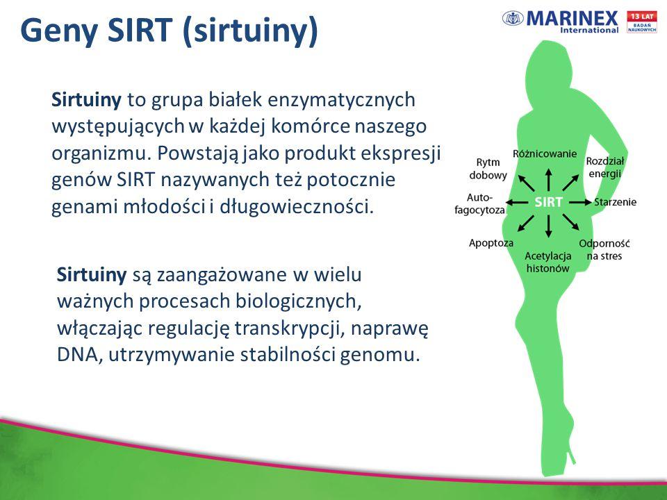 Geny SIRT (sirtuiny)