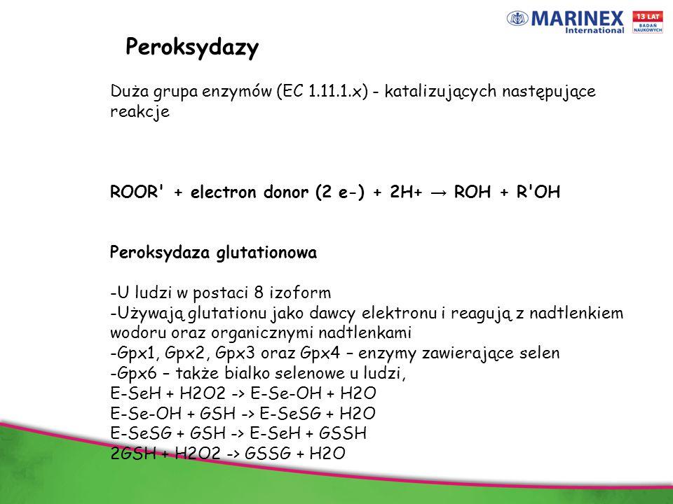 Peroksydazy Duża grupa enzymów (EC 1.11.1.x) - katalizujących następujące reakcje. ROOR + electron donor (2 e-) + 2H+ → ROH + R OH.