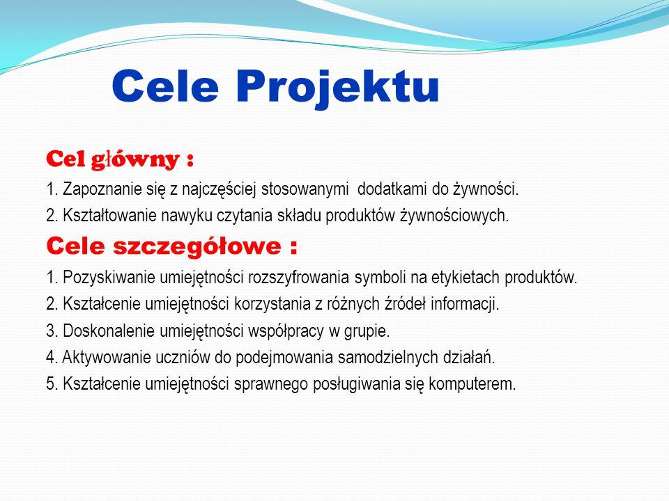 Cele Projektu Cel główny : Cele szczegółowe :