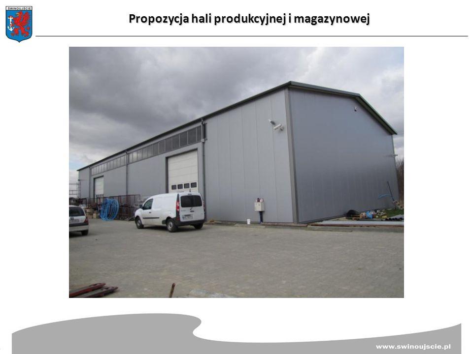 Propozycja hali produkcyjnej i magazynowej