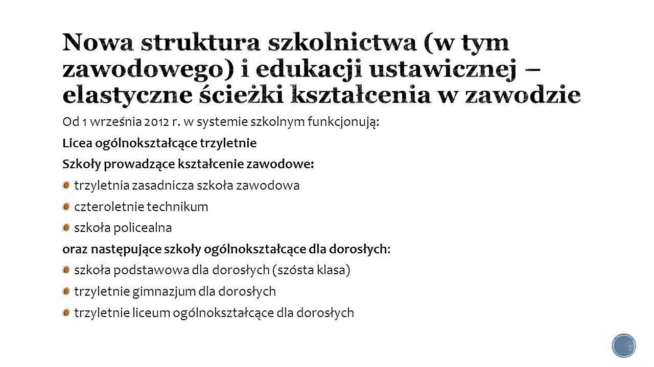 Nowa struktura szkolnictwa (w tym zawodowego) i edukacji ustawicznej – elastyczne ścieżki kształcenia w zawodzie