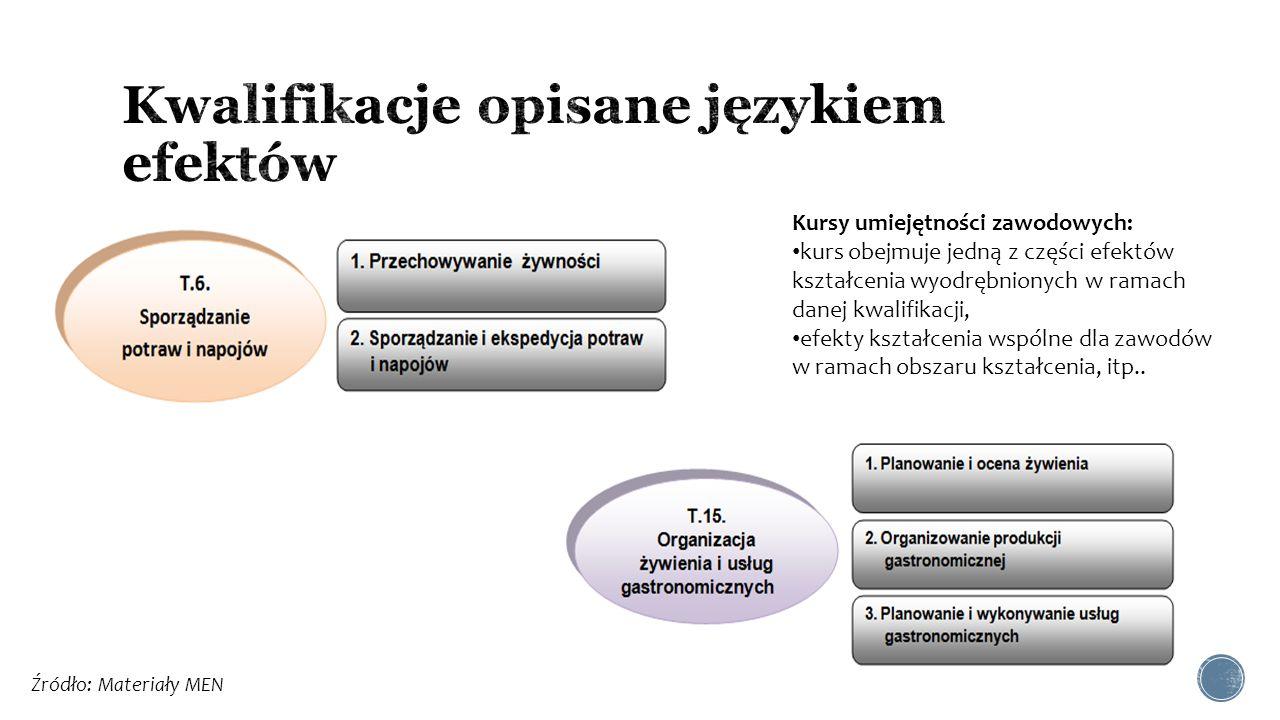 Kwalifikacje opisane językiem efektów