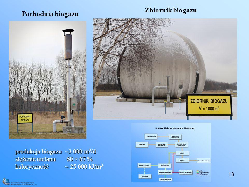 Zbiornik biogazu Pochodnia biogazu