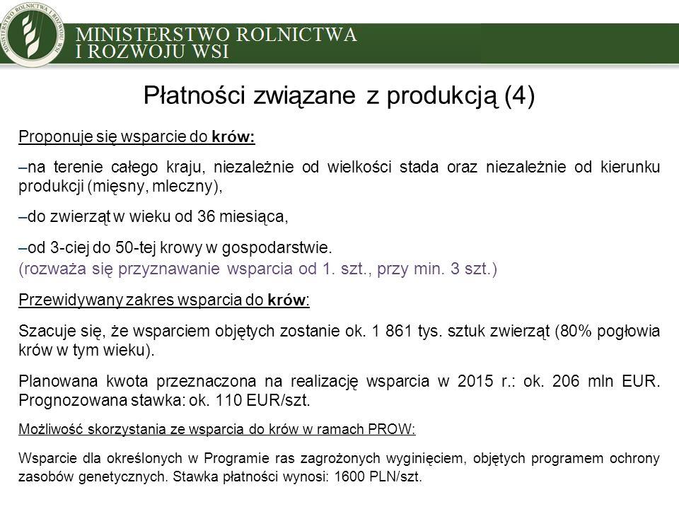 Płatności związane z produkcją (4)