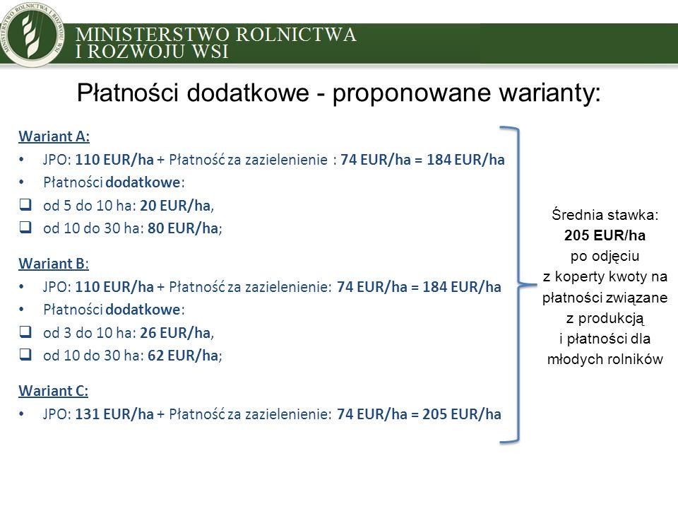 Płatności dodatkowe - proponowane warianty: