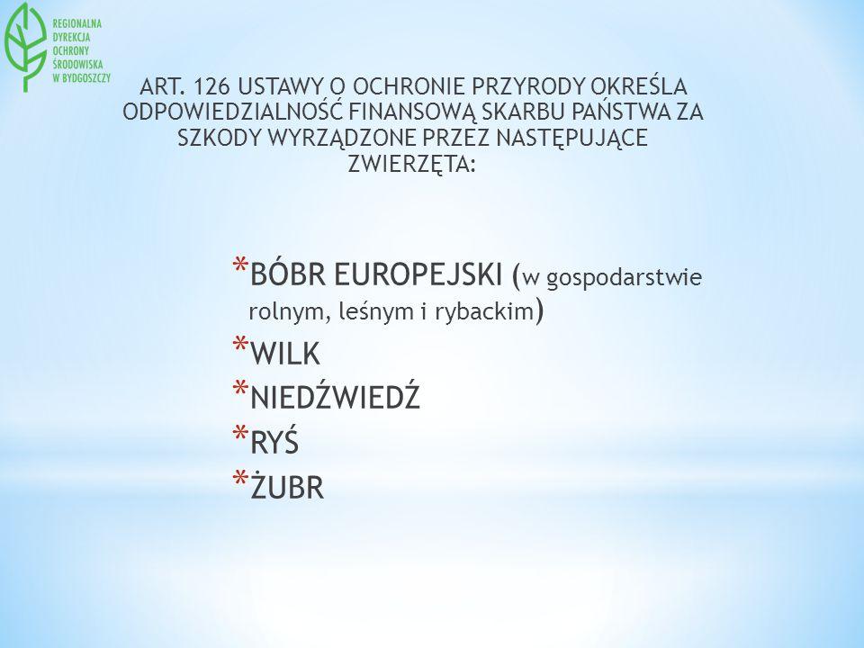 BÓBR EUROPEJSKI (w gospodarstwie rolnym, leśnym i rybackim) WILK
