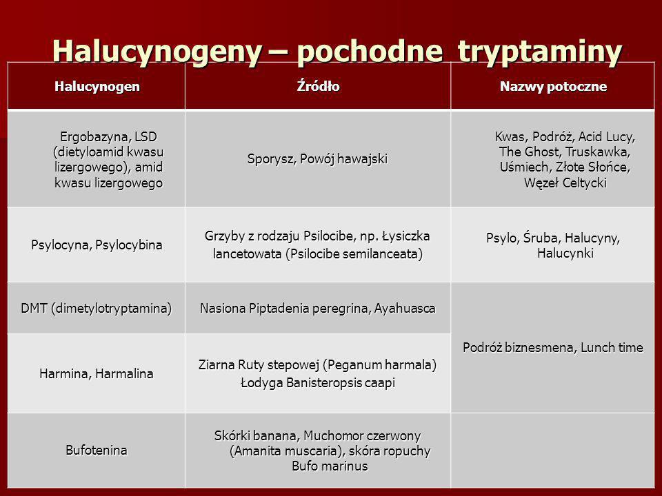 Halucynogeny – pochodne tryptaminy