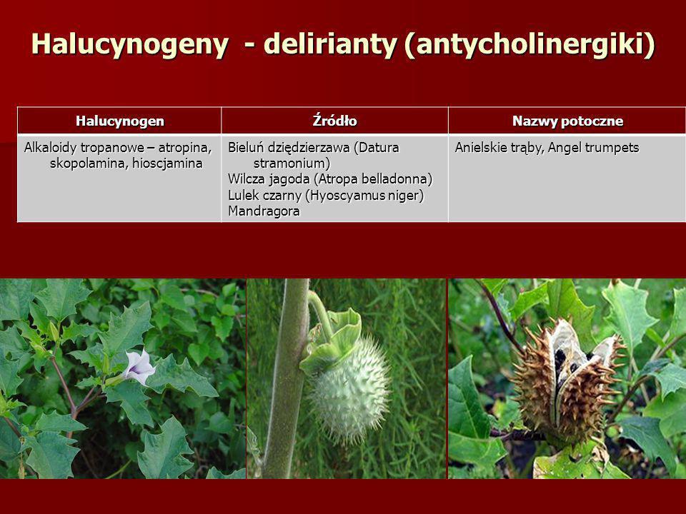 Halucynogeny - delirianty (antycholinergiki)