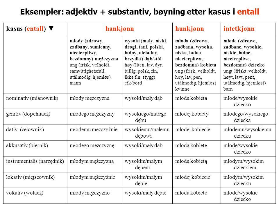 Eksempler: adjektiv + substantiv, bøyning etter kasus i entall