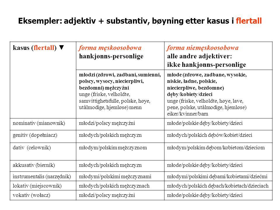 Eksempler: adjektiv + substantiv, bøyning etter kasus i flertall