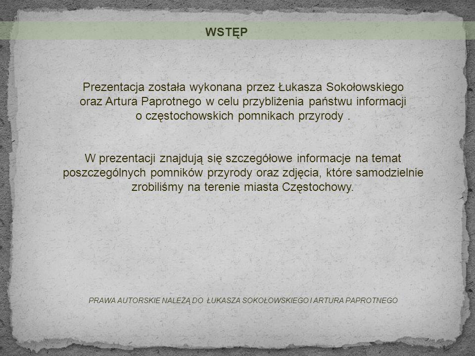 Prezentacja została wykonana przez Łukasza Sokołowskiego
