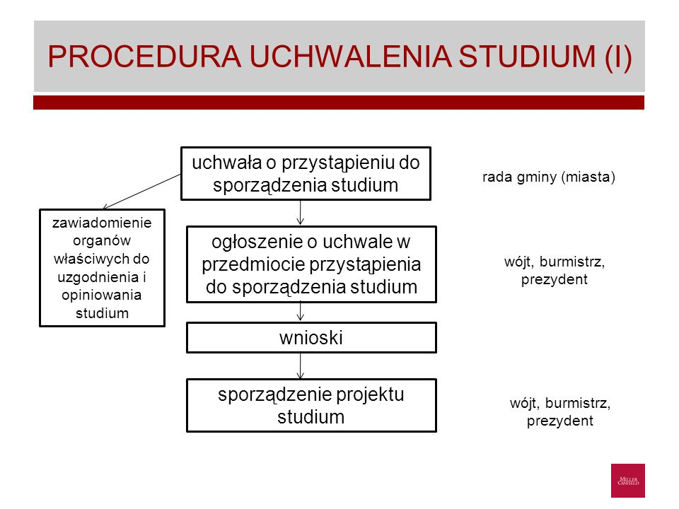 PROCEDURA UCHWALENIA STUDIUM (I)