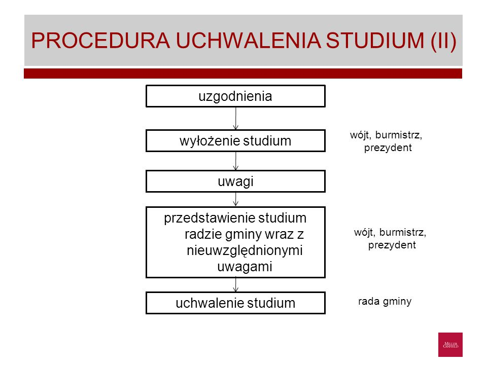 PROCEDURA UCHWALENIA STUDIUM (II)