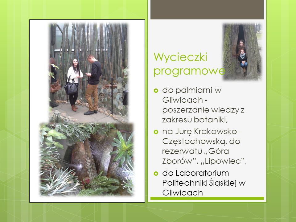 Wycieczki programowe do palmiarni w Gliwicach - poszerzanie wiedzy z zakresu botaniki,