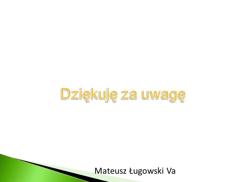 Dziękuję za uwagę Mateusz Ługowski Va
