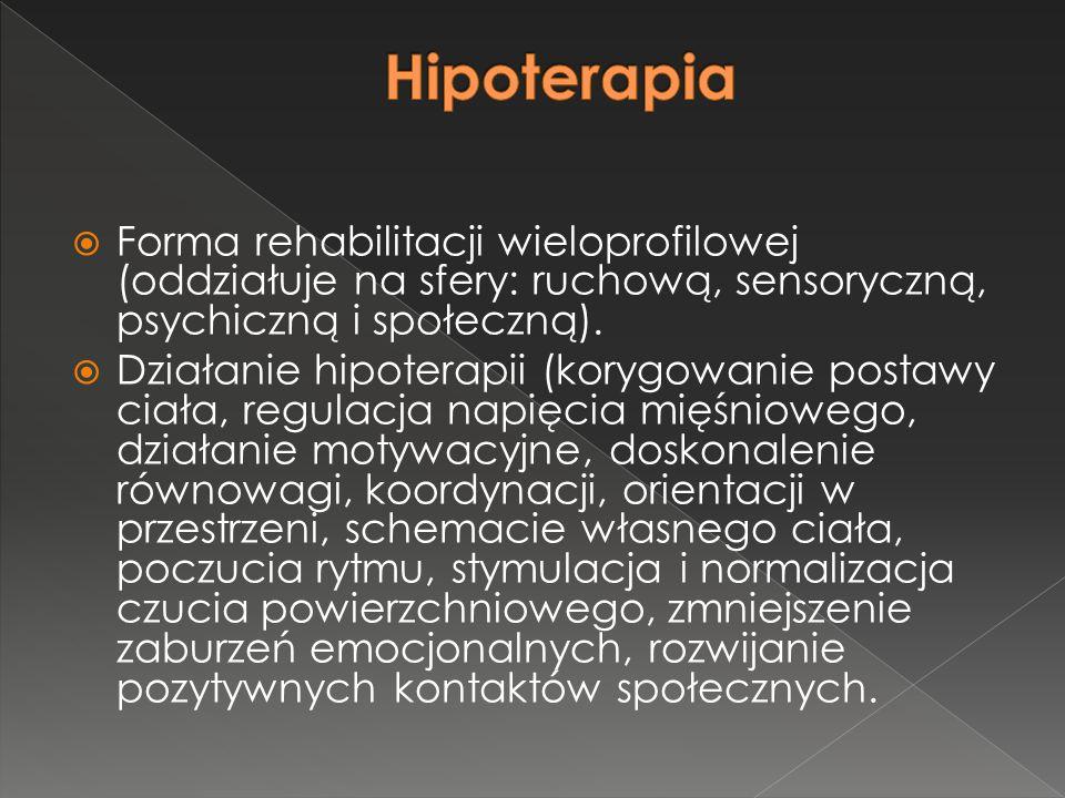 Hipoterapia Forma rehabilitacji wieloprofilowej (oddziałuje na sfery: ruchową, sensoryczną, psychiczną i społeczną).