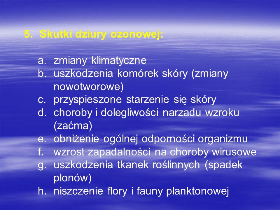 Skutki dziury ozonowej: