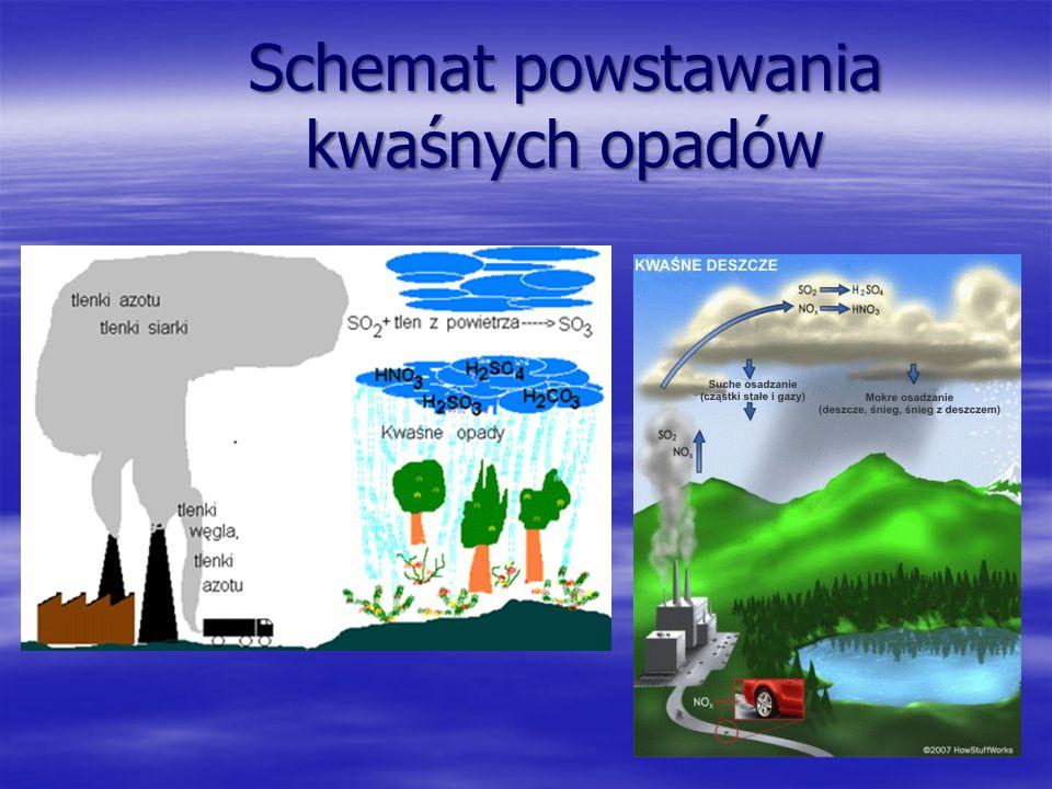 Schemat powstawania kwaśnych opadów