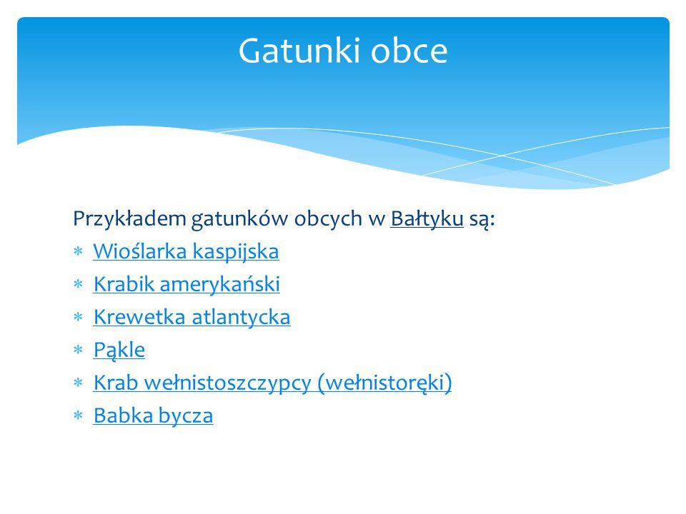 Gatunki obce Przykładem gatunków obcych w Bałtyku są: