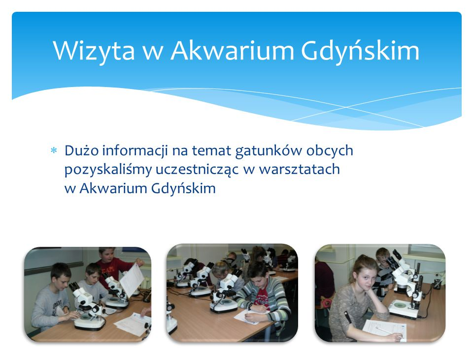 Wizyta w Akwarium Gdyńskim