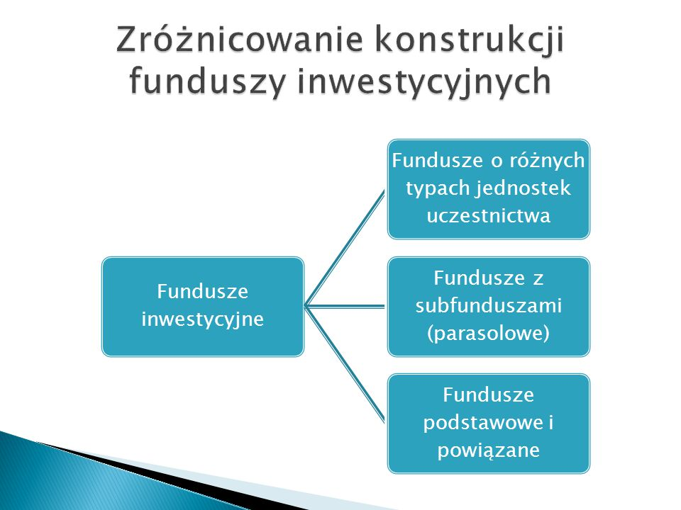 Zróżnicowanie konstrukcji funduszy inwestycyjnych