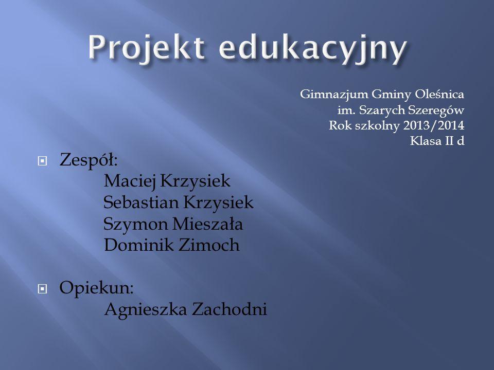 Projekt edukacyjny Zespół: Maciej Krzysiek Sebastian Krzysiek