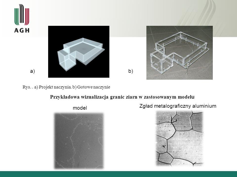 Przykładowa wizualizacja granic ziarn w zastosowanym modelu