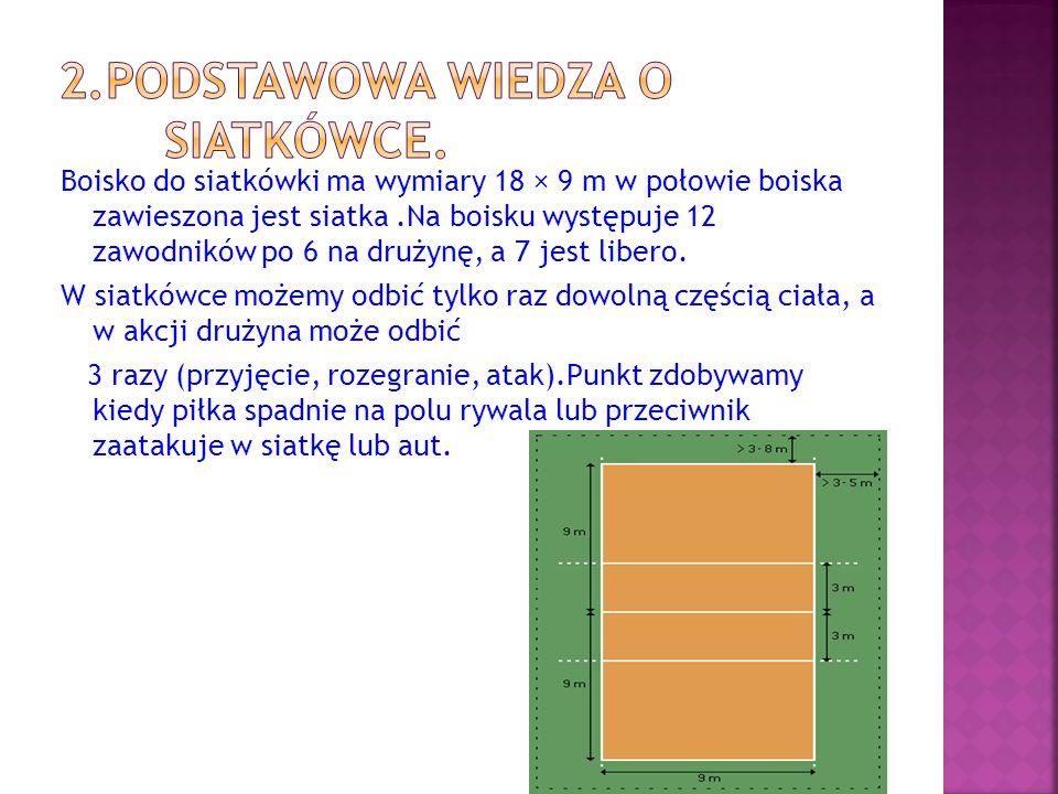 2.Podstawowa wiedza o siatkówce.