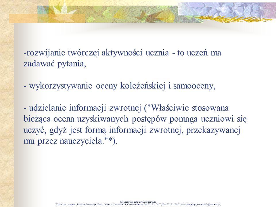 Realizator projektu: Powiat Cieszyński