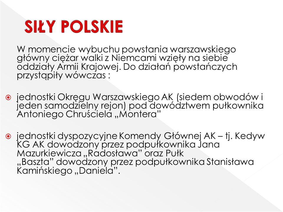 SIŁY POLSKIE