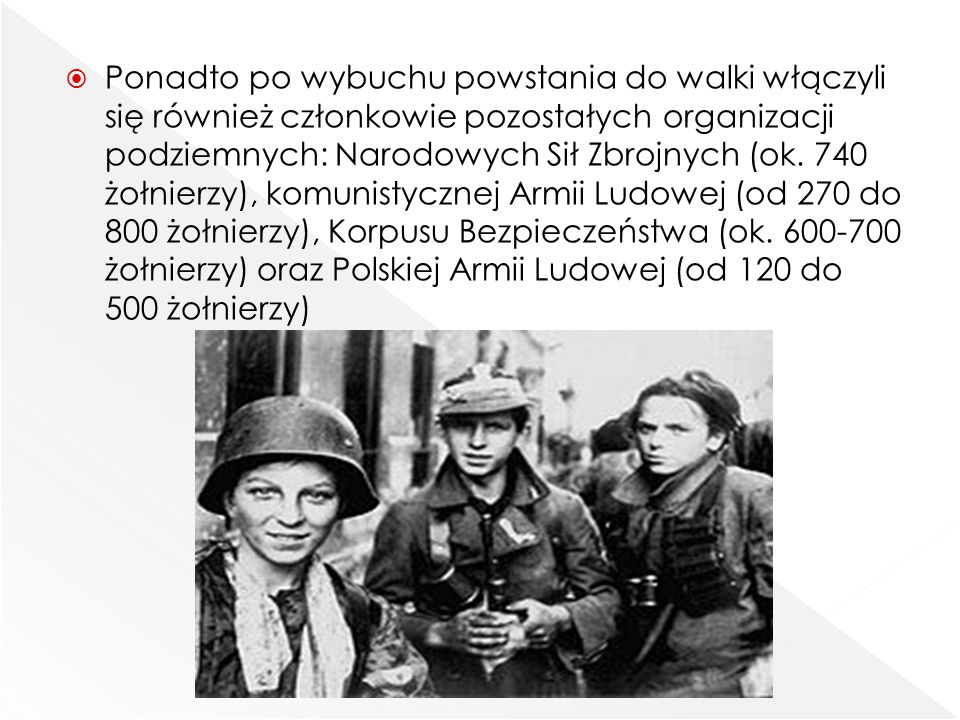 Ponadto po wybuchu powstania do walki włączyli się również członkowie pozostałych organizacji podziemnych: Narodowych Sił Zbrojnych (ok.