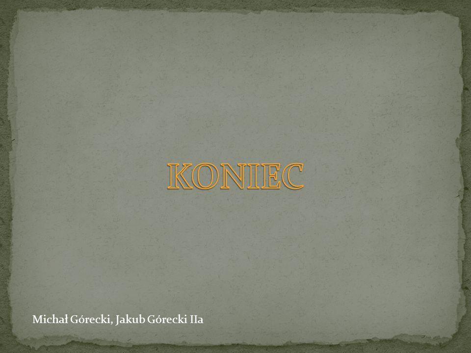 KONIEC Michał Górecki, Jakub Górecki IIa