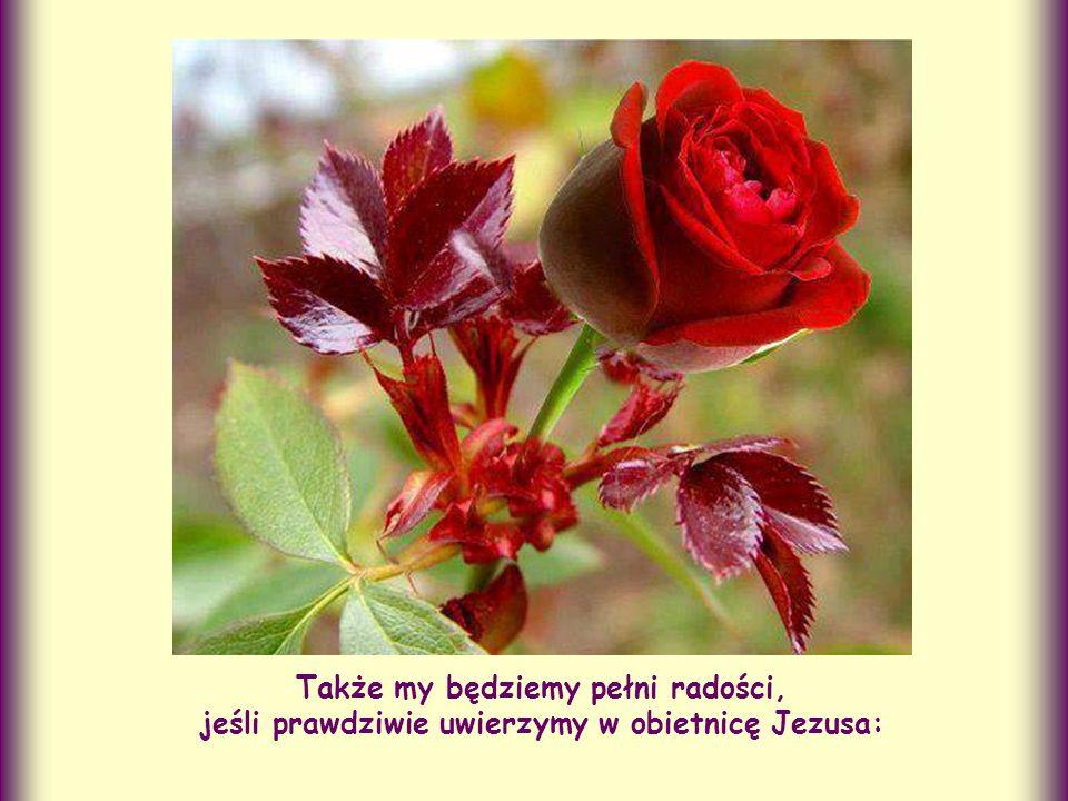 Także my będziemy pełni radości, jeśli prawdziwie uwierzymy w obietnicę Jezusa: