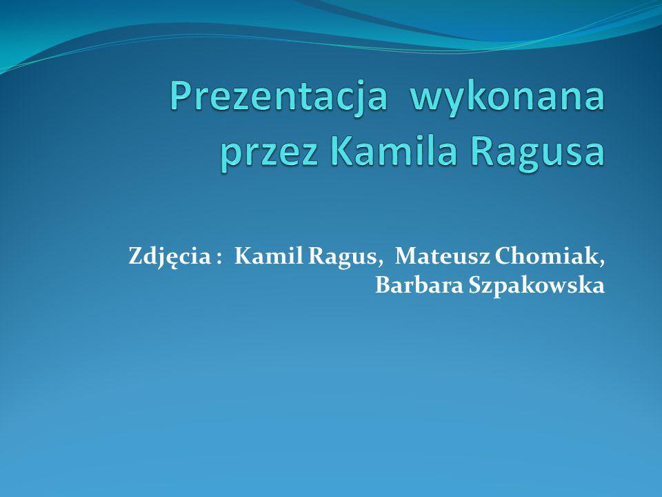 Prezentacja wykonana przez Kamila Ragusa