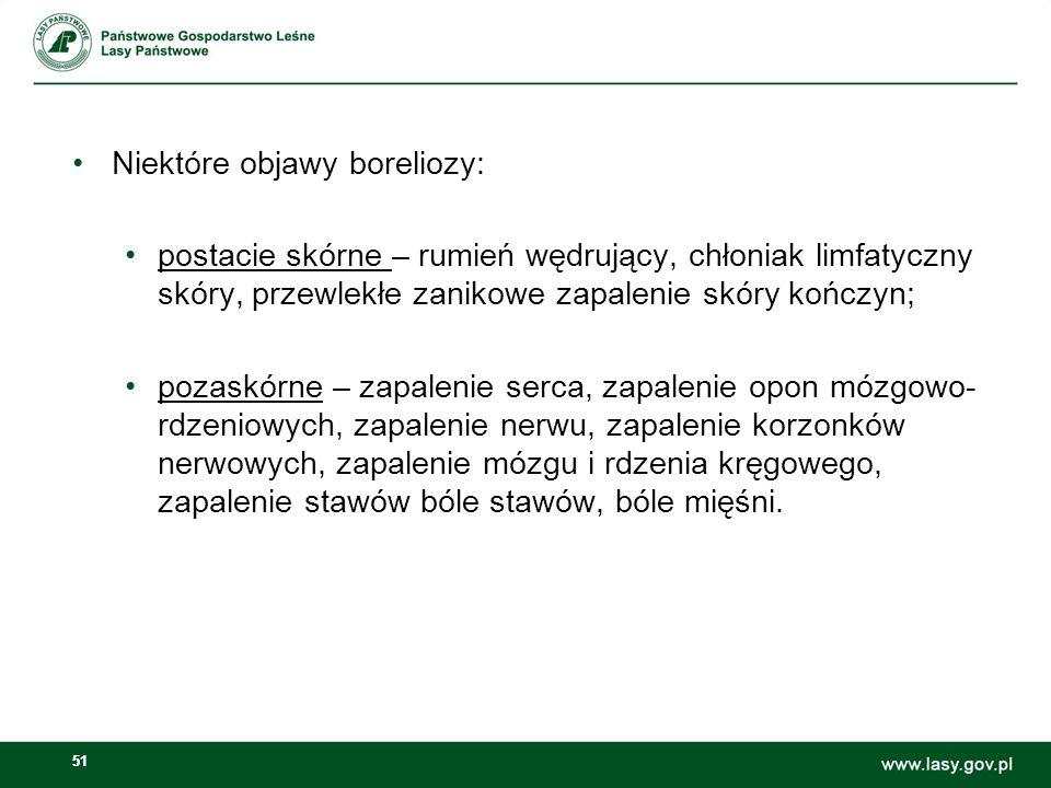 Niektóre objawy boreliozy:
