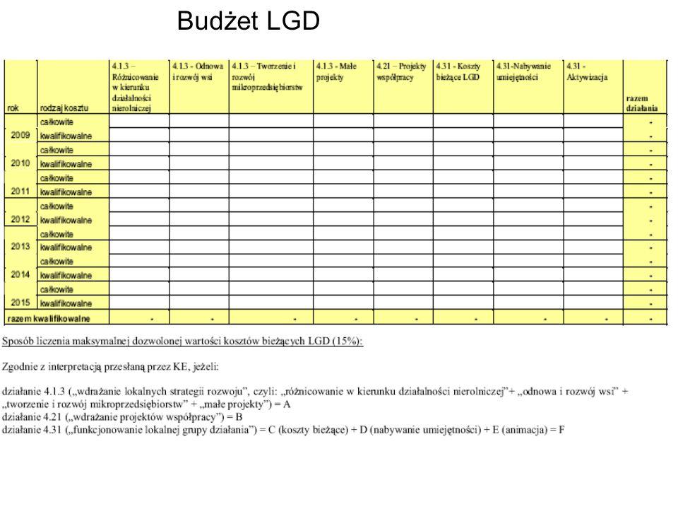 Budżet LGD