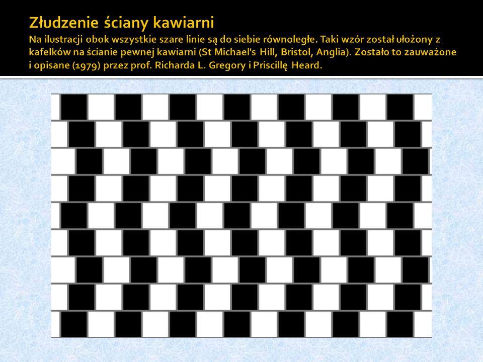 Złudzenie ściany kawiarni Na ilustracji obok wszystkie szare linie są do siebie równoległe.