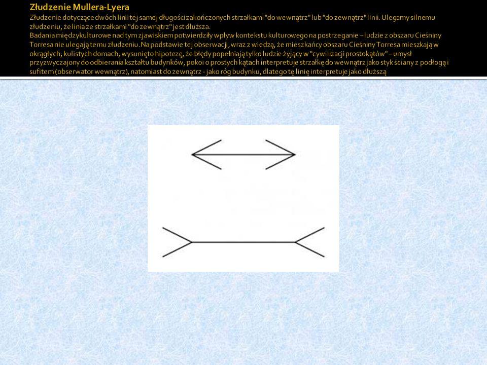 Złudzenie Mullera-Lyera Złudzenie dotyczące dwóch linii tej samej długości zakończonych strzałkami do wewnątrz lub do zewnątrz linii.