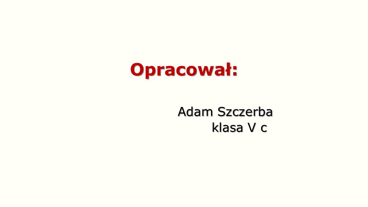 Opracował: Adam Szczerba klasa V c