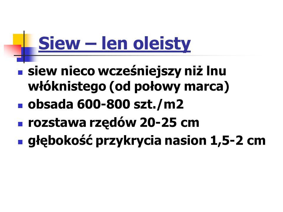 Siew – len oleisty siew nieco wcześniejszy niż lnu włóknistego (od połowy marca) obsada 600-800 szt./m2.