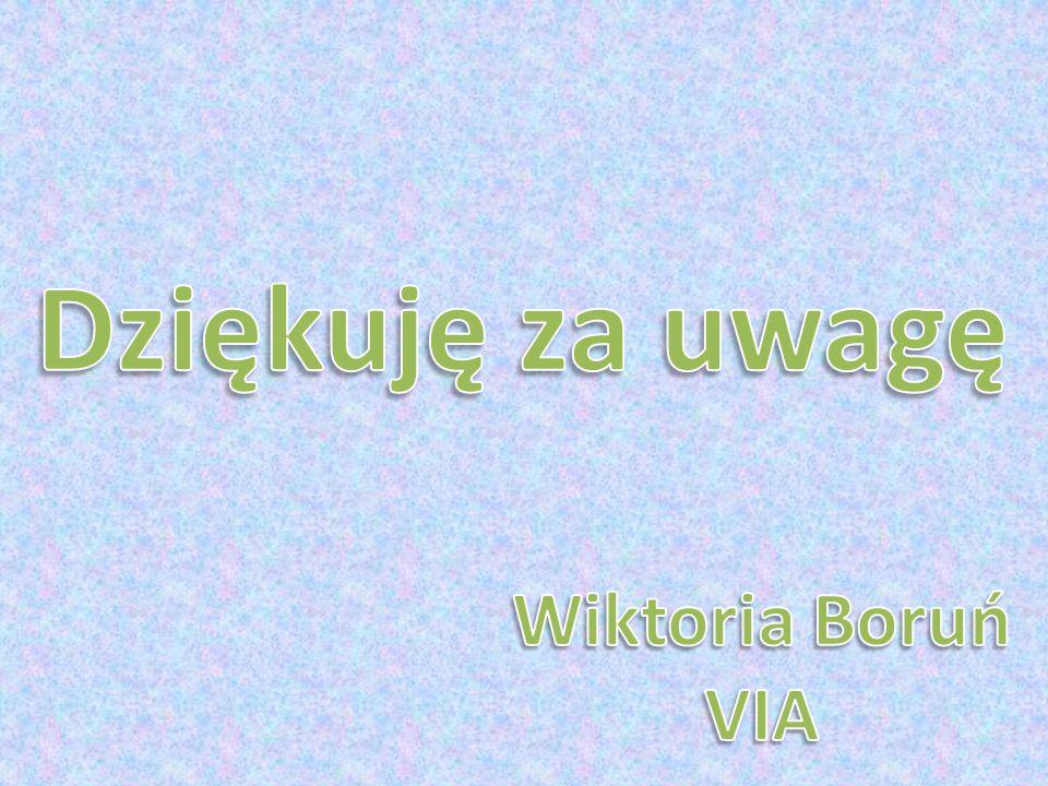 Dziękuję za uwagę Wiktoria Boruń VIA