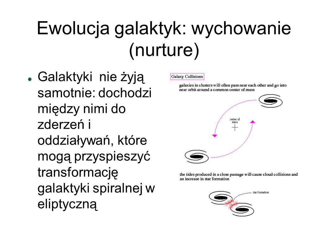 Ewolucja galaktyk: wychowanie (nurture)