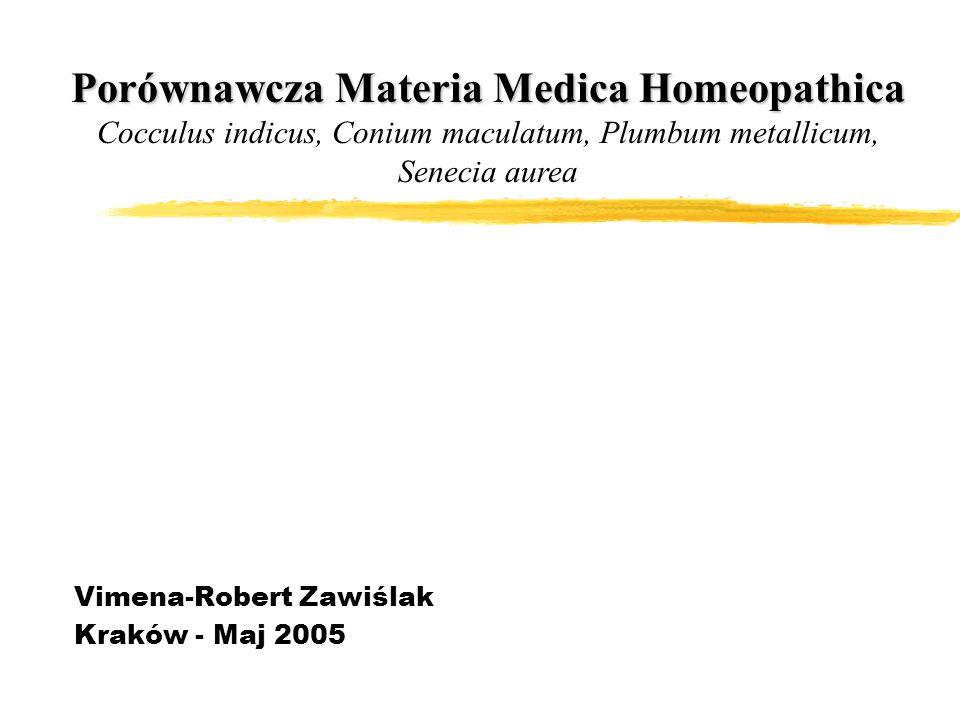 Vimena-Robert Zawiślak Kraków - Maj 2005