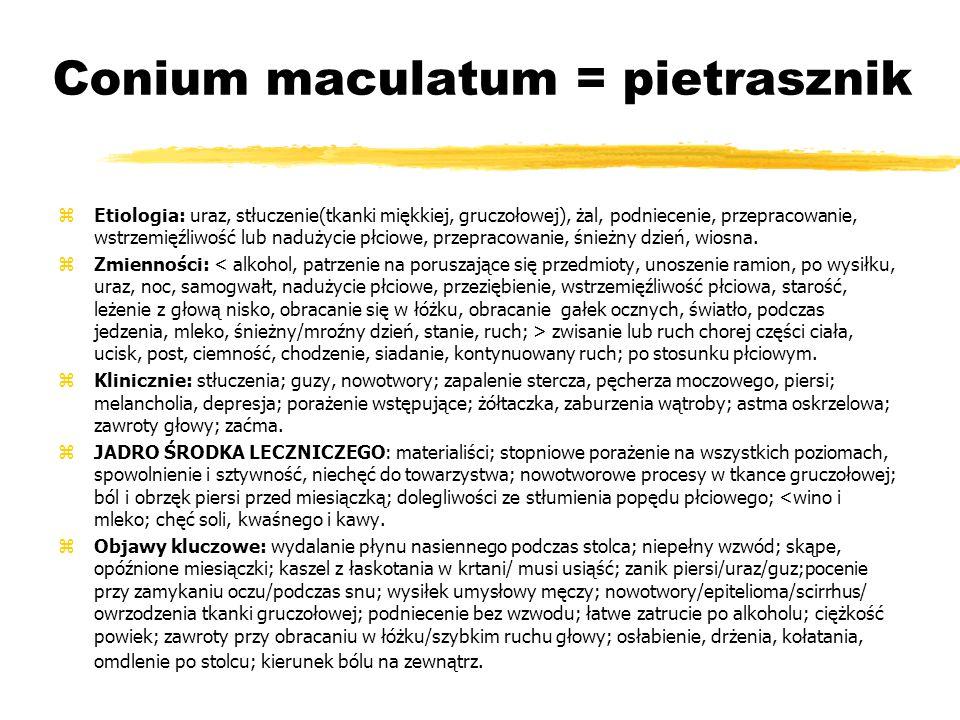 Conium maculatum = pietrasznik