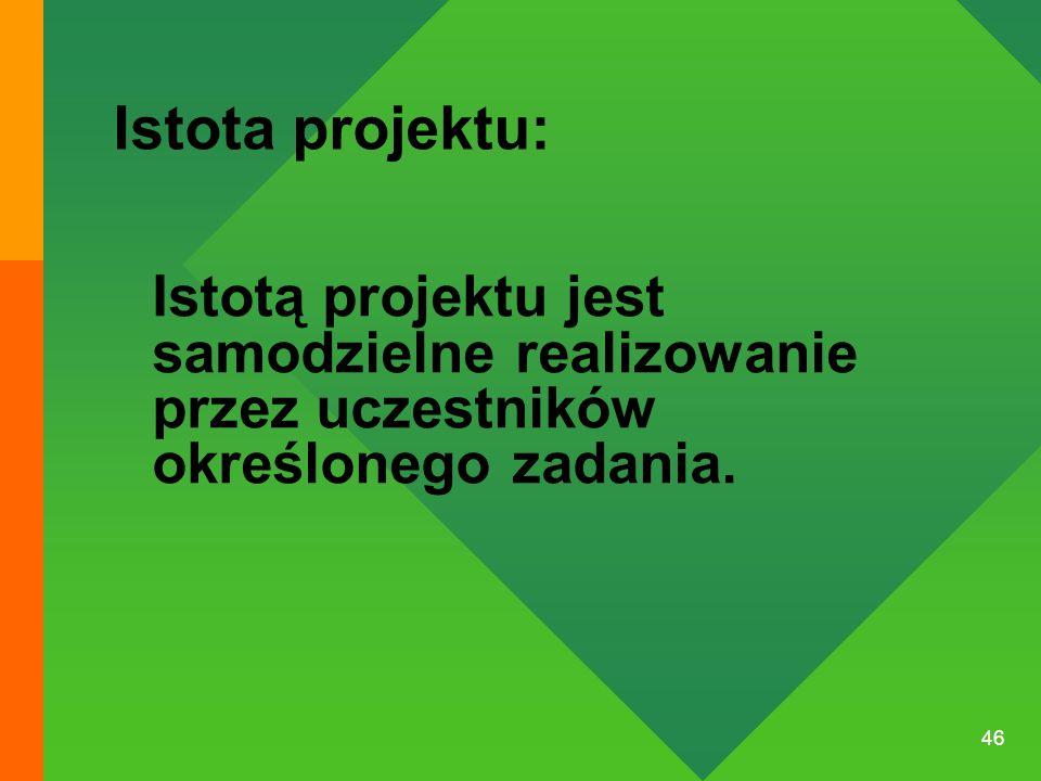 Istota projektu: Istotą projektu jest samodzielne realizowanie przez uczestników określonego zadania.